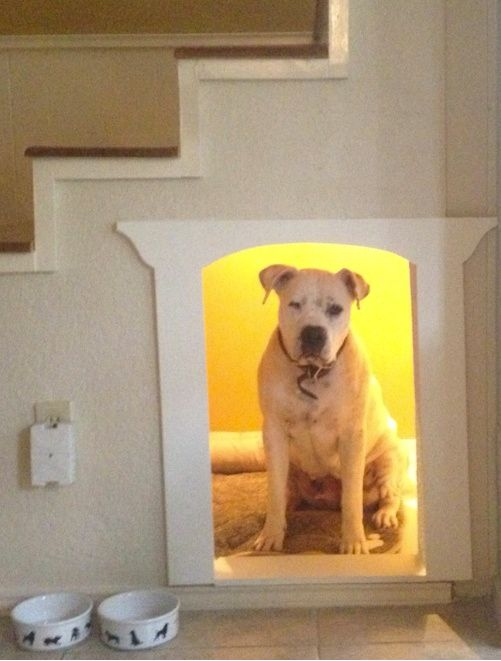 Idea :: Staircase Dog House