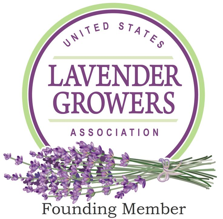 Lavender Vanilla Ice Cream » Lavender Wind Farm