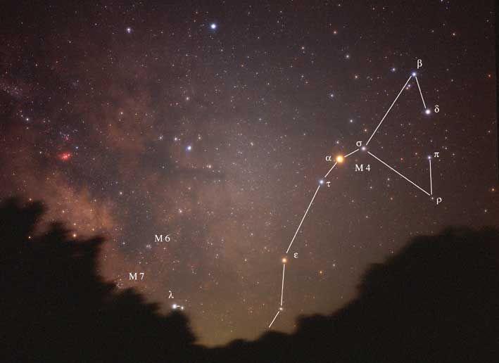 Scorpione | Astrologia Archetipica Sistemica