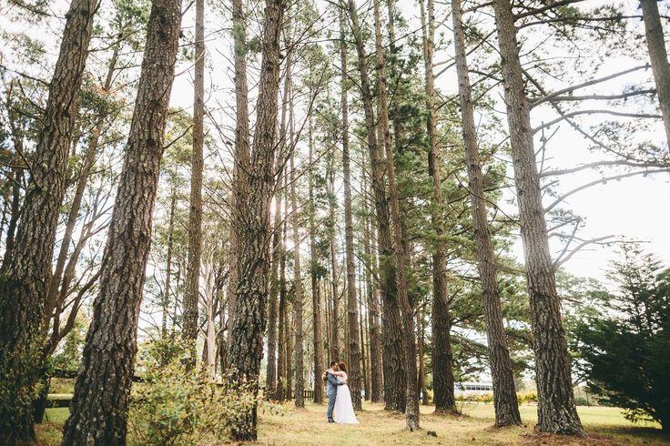 sylvan glen wedding