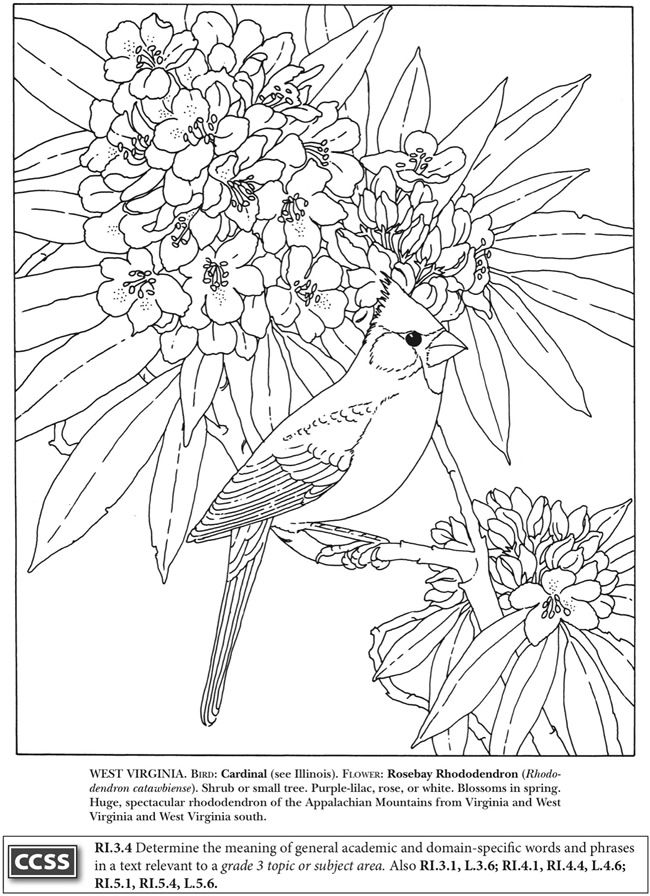 BOOST State Birds and Flowers Coloring Book: Dover Publications Samples