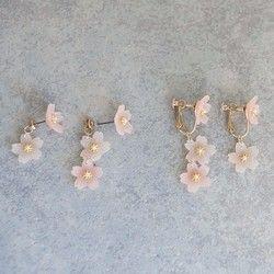すりガラスのような質感が涼しげな桜のピアス(イヤリング)です。ポリマークレイで製作した花びらに小さなプラパールを一粒のせました。左右で花の数を変えたアシンメトリーなデザインになっています。 価格は1ペア(2個セット)のお値段です。 ------------------------------ ご購入時に備考欄からお知らせください。 [金具] a.ピアス(チタン)※キャッチのみメッキです。b.イヤリング ------------------------------- [サイズ] 花の直径:だいたい15mmポリマークレイを手作業で一つひ�