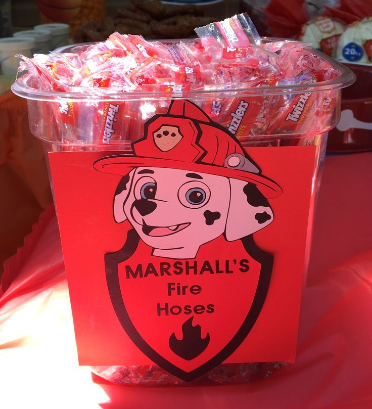 For my son's 3rd Birthday we did a Paw Patrol theme.  Marshall's Fire Hoses using Twizzlers from BJ's