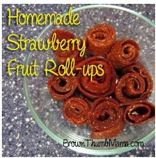 Homemade Fruit Roll-Ups |Easy Homesteading