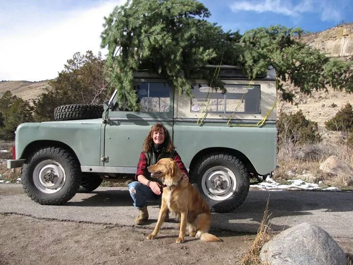 Land Rover driver and her dog