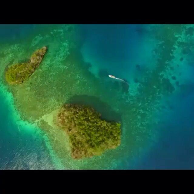 Wow ❤️ togean island, indonesia.