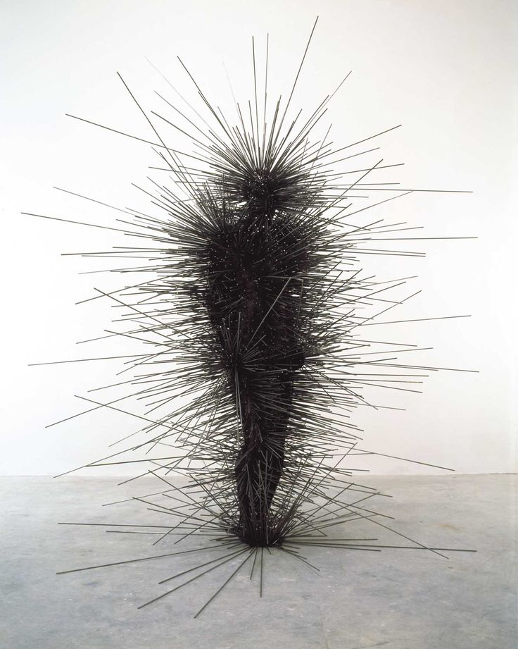 Antony Gormley, man made of large pins, I like how clever the idea is and how it was put together