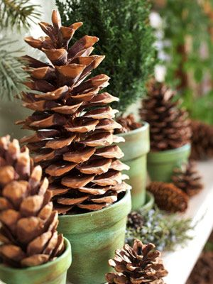 Mantel idea - where are my pots? Pinecone trees -- pretty winter
