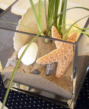 cute idea for a beach inspired party event as centerpieces.