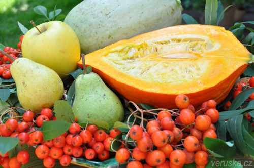 Dýňová pomazánka a jiné recepty z dýně, hrušky, jeřabiny