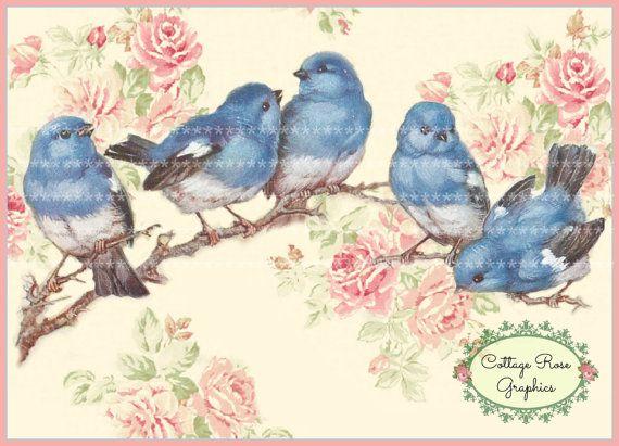 Merle-bleu et le téléchargement numérique grandes roses roses ECS acheter 3 obtiennent une seule image gratuite imprimable
