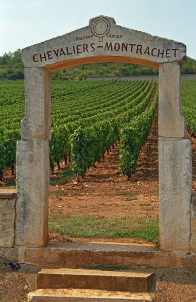 A stone portico to the vineyard Chevalier-Montrachet, France.  Photo: Chartron Dupard, Danita Delimont