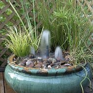 Container water gardens are a great way to get your feet wet with wate… :: Hometalk