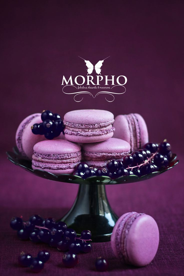 blackcurrant macarons - Morpho - Fabulous Cafe in Chisinau photo by www.edithfrincu.ro