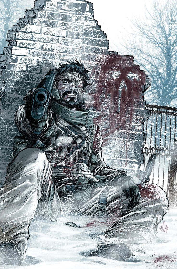 Punisher #8 cover, 2012