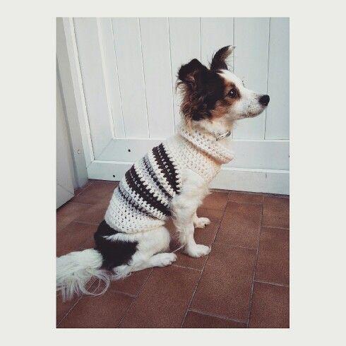 Maglioncino lavorato all uncinetto con rimanenze di vecchie lane_per cuccioli o cani di taglia piccola_by_Rossella Creazioni