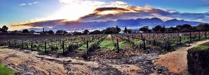 Paarl, Western Cape, South Africa. Our beautiful Du Toitskloof Mountains!