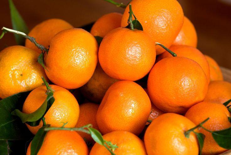 Small Orange Citrus