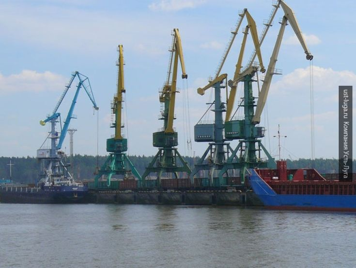 Новый зерновой терминал появится в торговом порту Усть-Луга. Он станет частью проекта «Лугопорт», одна из главных задач которого увеличить экспорт злаковых из России в страны Европы...