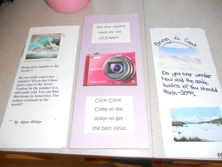 Biome Travel Brochures Classroom Amp Curriculum Ideas