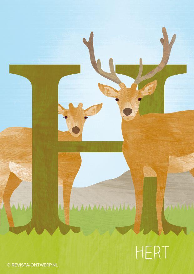 De H is van hert. Twee herten kijken je nieuwsgierig aan, een vrouwtje en een mannetje, met gewei.
