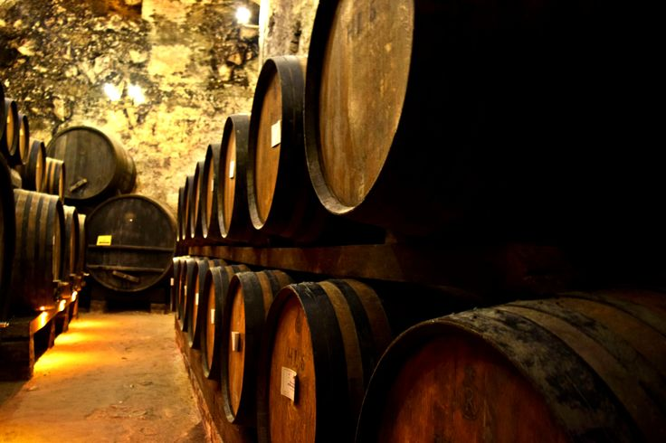 Exploring a wine cellar in Tuscany.