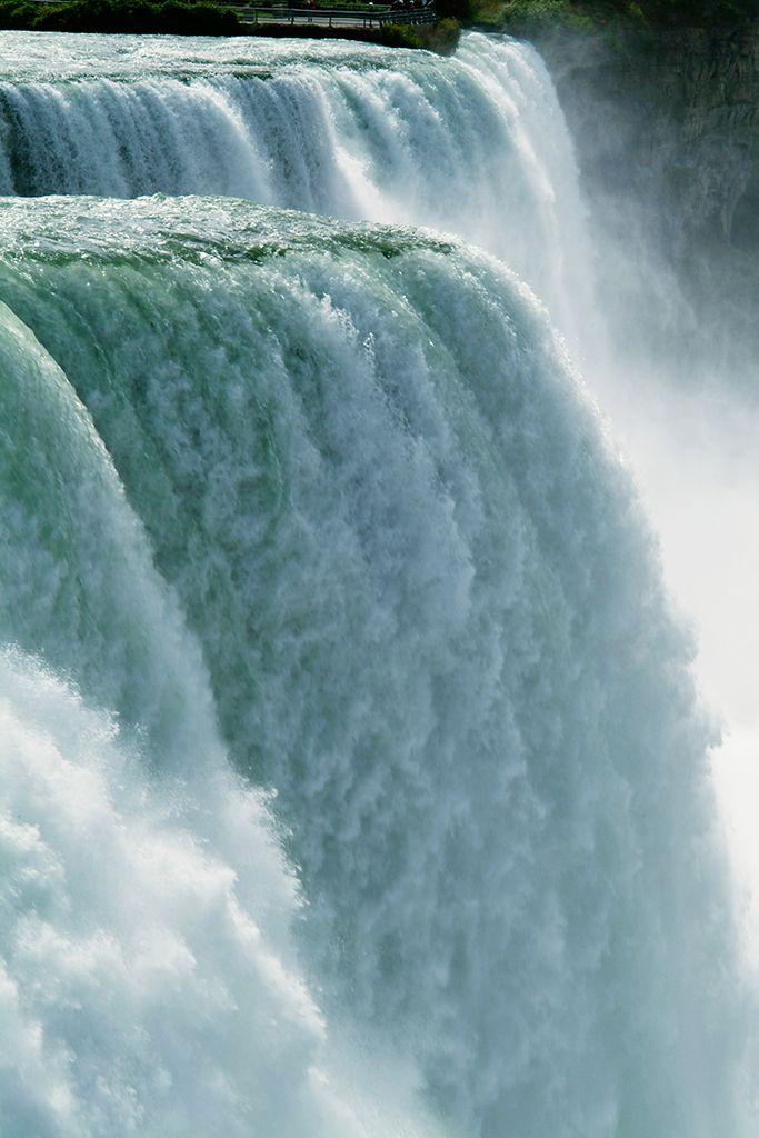 Niagara FallsGrey Whales,  Gray Whales, Niagara Falls, Royce Bair, Waterfall,  Eschrichtius Robustus,  Eschrichtius Gibbosus, Fall Home,  Devilfish