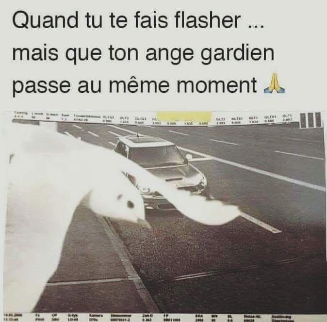 Quand tu te fais flasher mais que ton #ange #gardien #passe au même #moment !