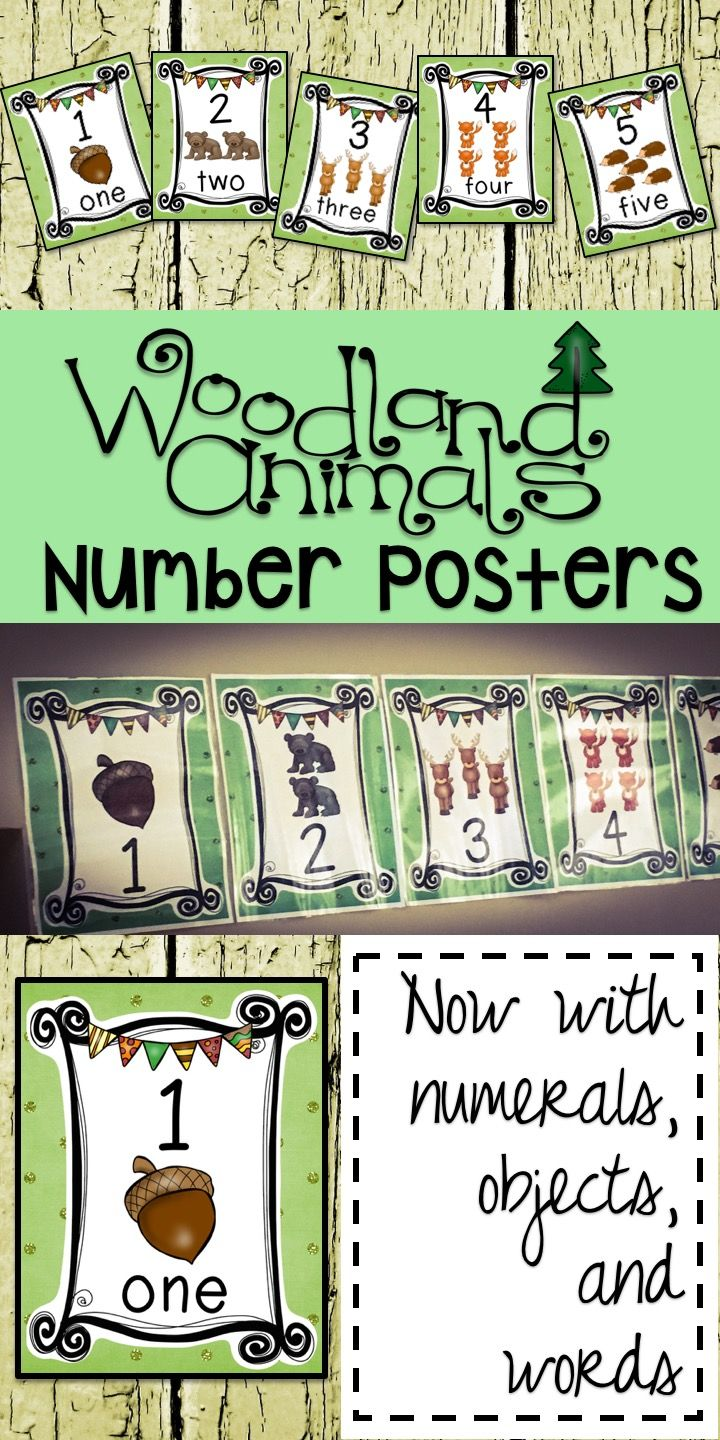 Number Poster Set for a Woodland Forest Animals Theme Classroom Decor