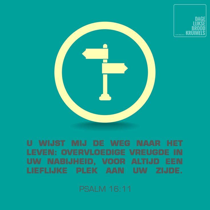 Psalm 16:11