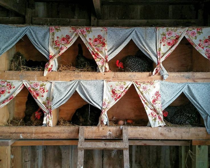 How darling is this chicken coop? They have curtains! Love the old florals.