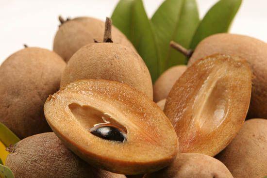 Le sapotille un fruit vraiment thailandais