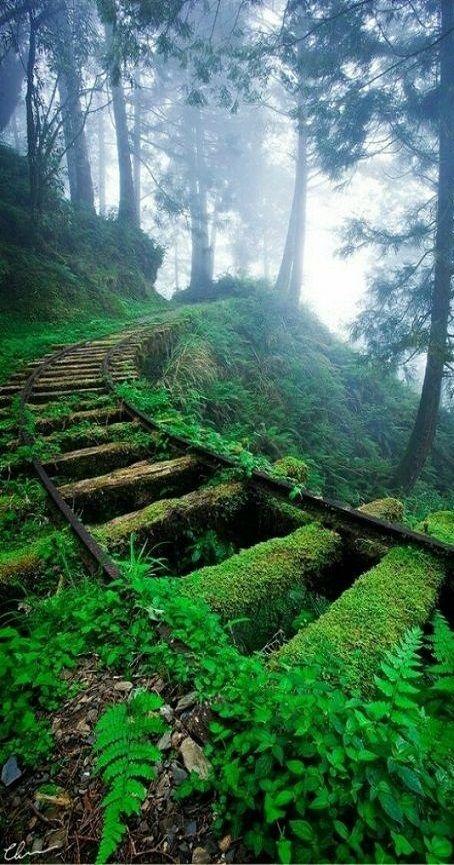 New Zealand - Old Main Railway Walk