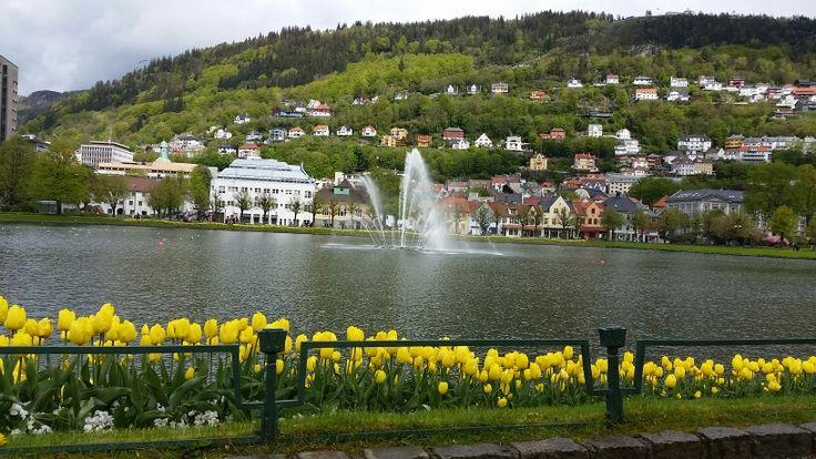Bergen 's beauty.