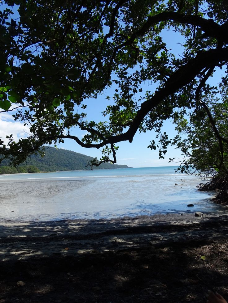 Cape Tribulation, Australia