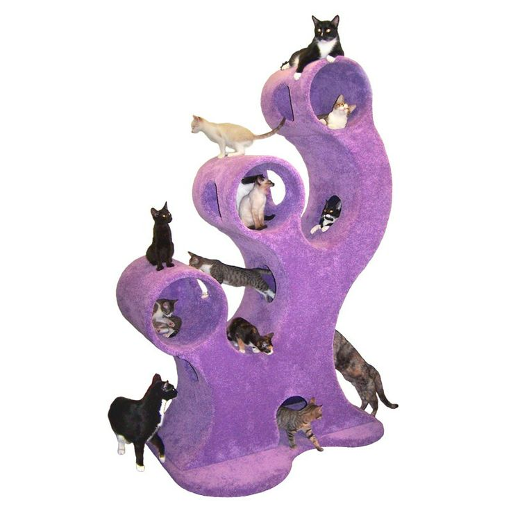 """oh, look, it's just like my house...not! I have five cats, which is more than enough, but I think they would all love this gigantic, uber-expensive Dr. Seussian cat climber! Don't worry, the Purple Cat Eater comes in roughly 147 colors, including """"Zebra,"""" but that's what your $2G buys!"""