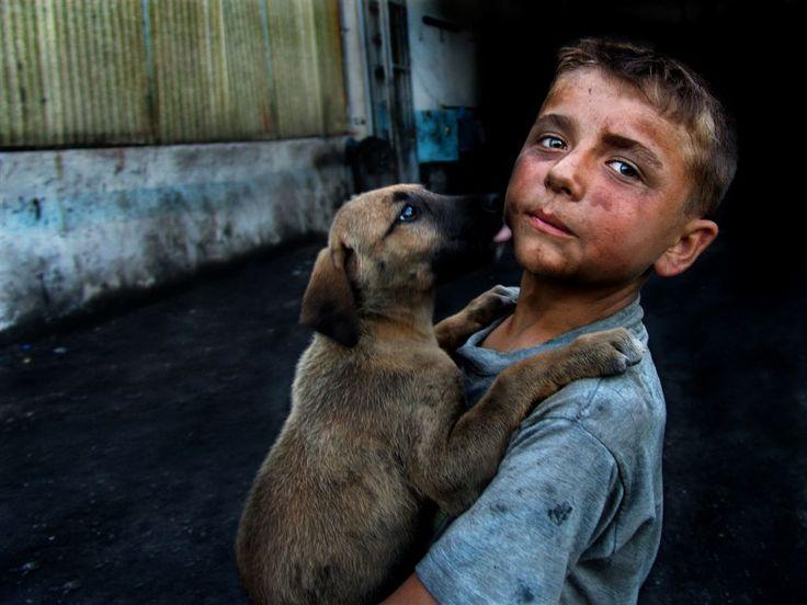 Koza Yönetim& Haytap 2012 'Sokak Köpekleri ve Çocuk ' fotoğraf yarışması  3.ÖDÜLÜ_ZEKİ YUVUZAK.jpg (1024×768)
