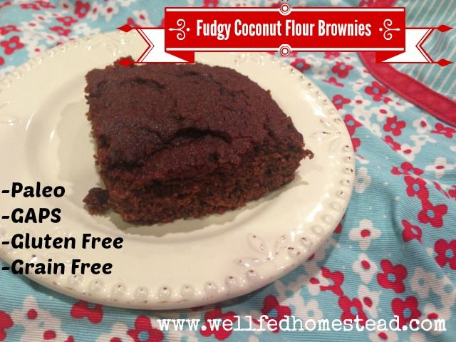 Fudgy Coconut Flour Brownies (the one I ate used butter and the recipe was halved for a smaller brownie, then topped with a buttercream made from butter and chocolate chips; amazing!).  Paleo, not AIP