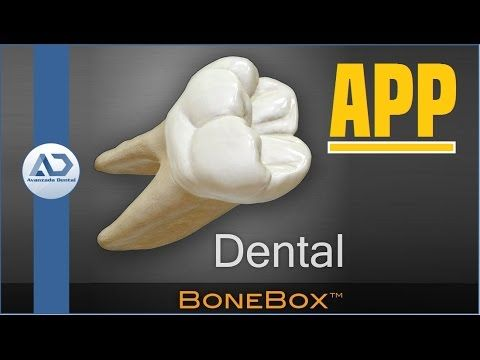 Morfologia piezas dentarias superiores definitivas - YouTube