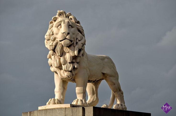 Lion near Big Ben, London / Mair Studio