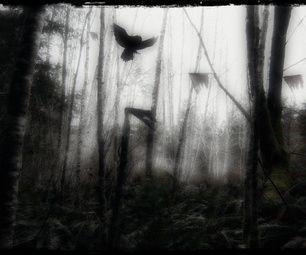 Scary Woods Photo Edit