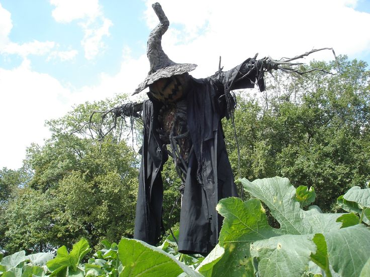 51 best Halloween Ideas images on Pinterest Halloween ideas - halloween scarecrow ideas