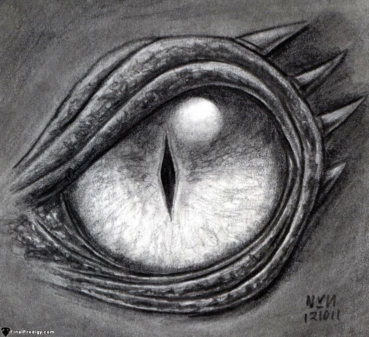 Scribble Drawing Definition : How to draw a dragon eye step by define the