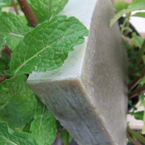 Mięta to świeżość, kóra wyostrza zmysły, pobudza, chłodzi. Cóż może być lepszego w gorące letnie południe, niż szybki prysznic z chłodzącą nutą mięty i cytryny? Czy wiecie, że w samej tylko Polsce isnieje ponad 10 gatunków mięty? Mint & Lemon zawiera jej 2 rodzaje, a jego ciemny kolor jest wynikiem silnego naparu miętowego. Dodatek glinki zielonej pozwala łatwiej zmyć nadmiar sebum na skórze.