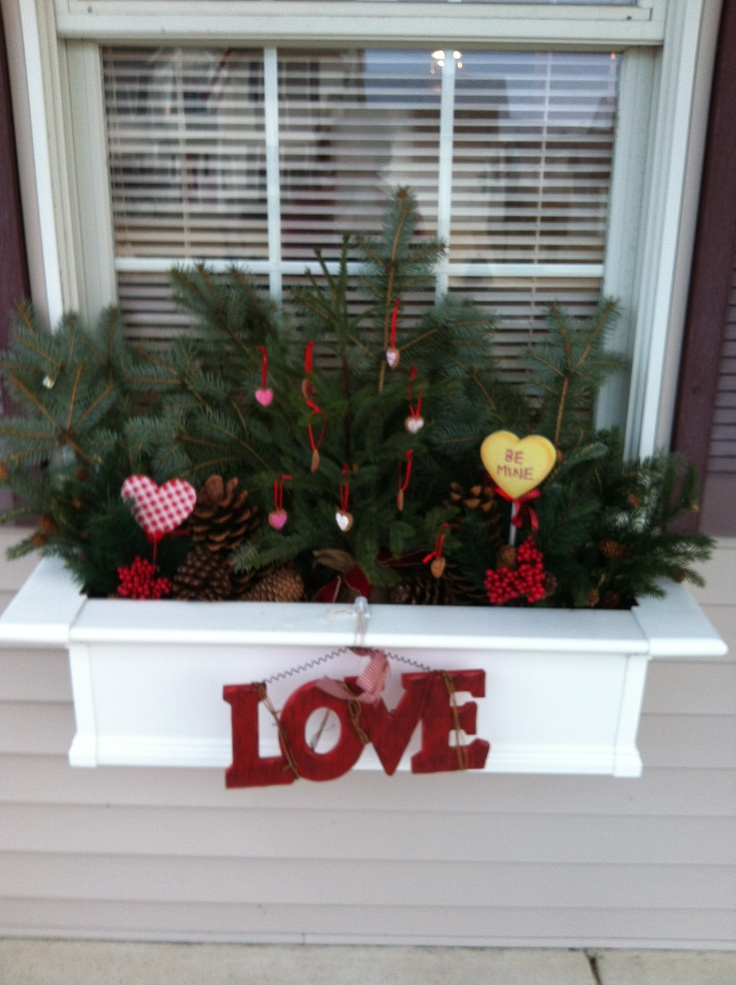 My windowboxes for Valentine's Day.