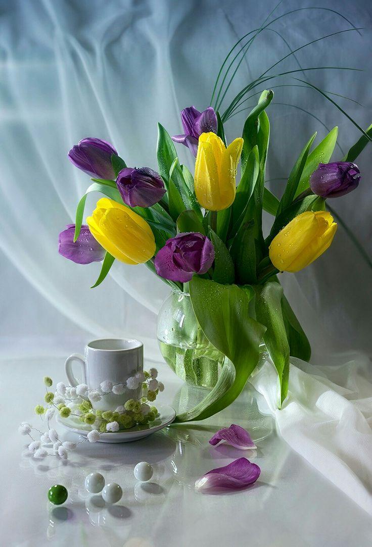 доброе утро фото тюльпаны синие голубые