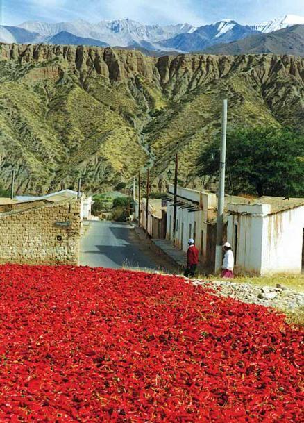 Argentina: Valles Calchaquies