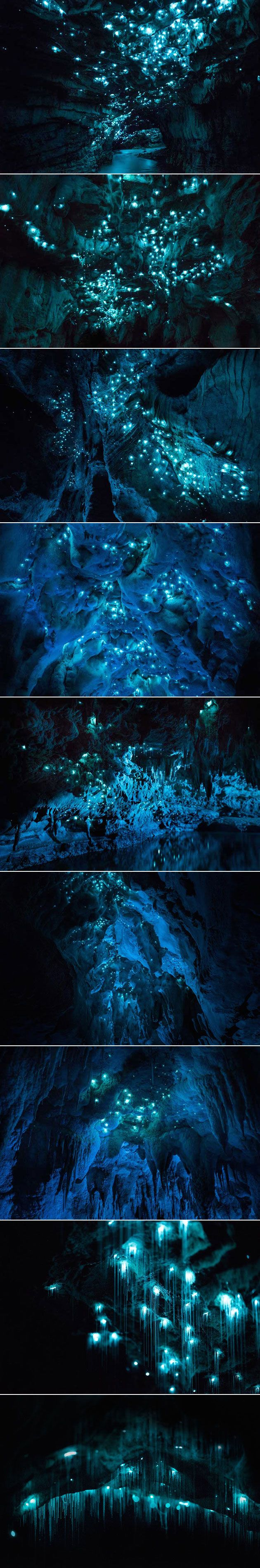 By venturing into the 30-million-year-old limestone caves on New Zealand's North Island, photographer Joseph Michael was able to capture magical images of the glowworms that call this place home. Against the natural backdrop that the cave provides, it looks as though there are hundreds of miniature, blue-tinted stars, but this is actually the work of glowworms known as Arachnocampa luminosa.