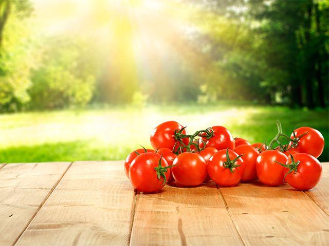 M s de 25 ideas incre bles sobre plantar pimientos en for Plantar pimientos y tomates