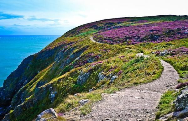 Howth, Ireland.   Go there for a cliff walk. If you are lucky you can see dolphins and seals. And afterwards have a fish soup in the harbor.